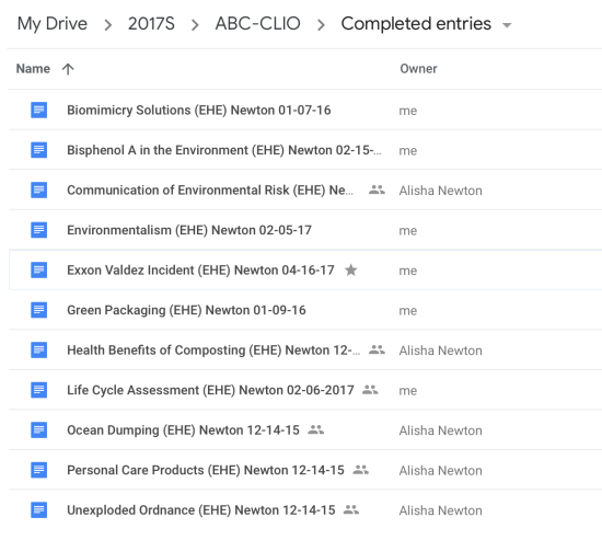 A screenshot of my completed entires in Google Drive